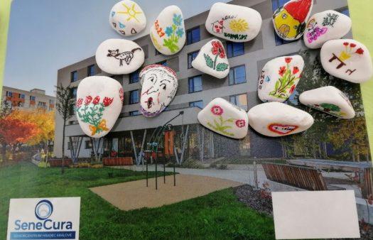 Malované putovní kamínky zeSeniorCentra v Hradci
